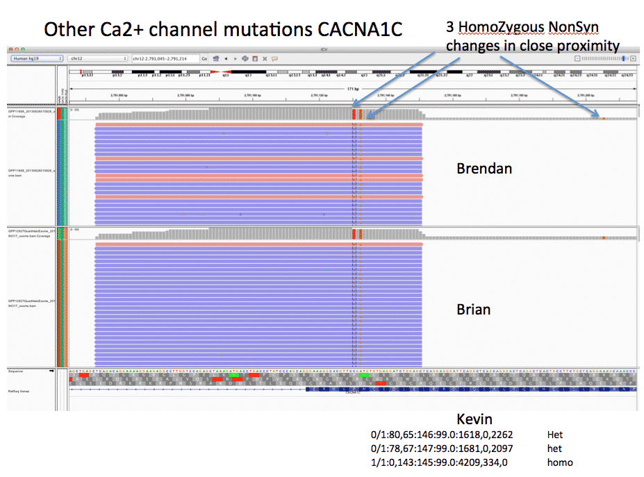 CACNA1C Homozygous mutations are located near an alternative TSS and impact a Methionine