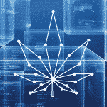 Blockchain technology is a modern requirement for the cannabis industry